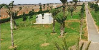 FERME de 2 hectares région de Sidi Rahal