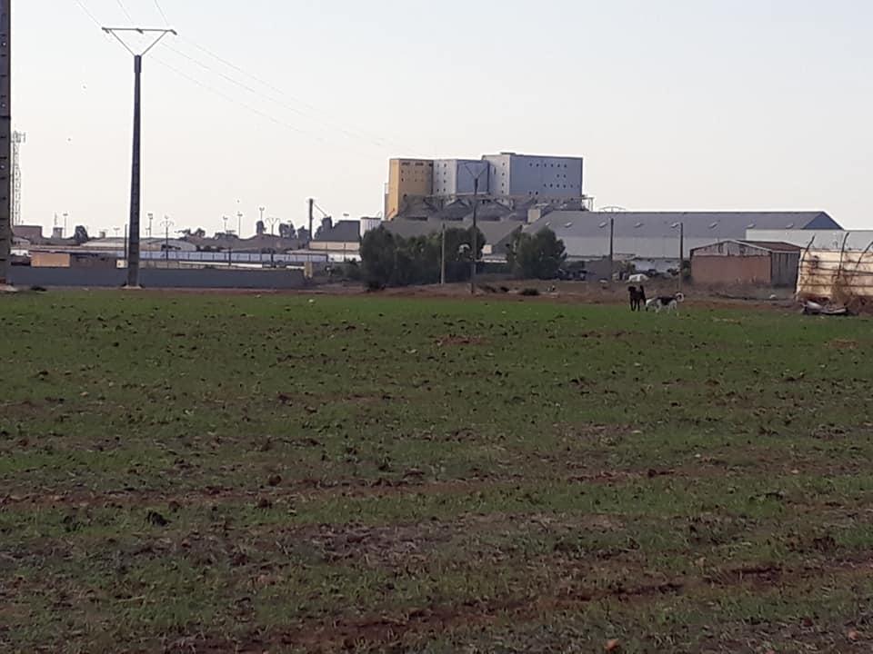 Vente terrain 18 hectares zone industrielle région Casablanca Maroc GSM : 00212637846987