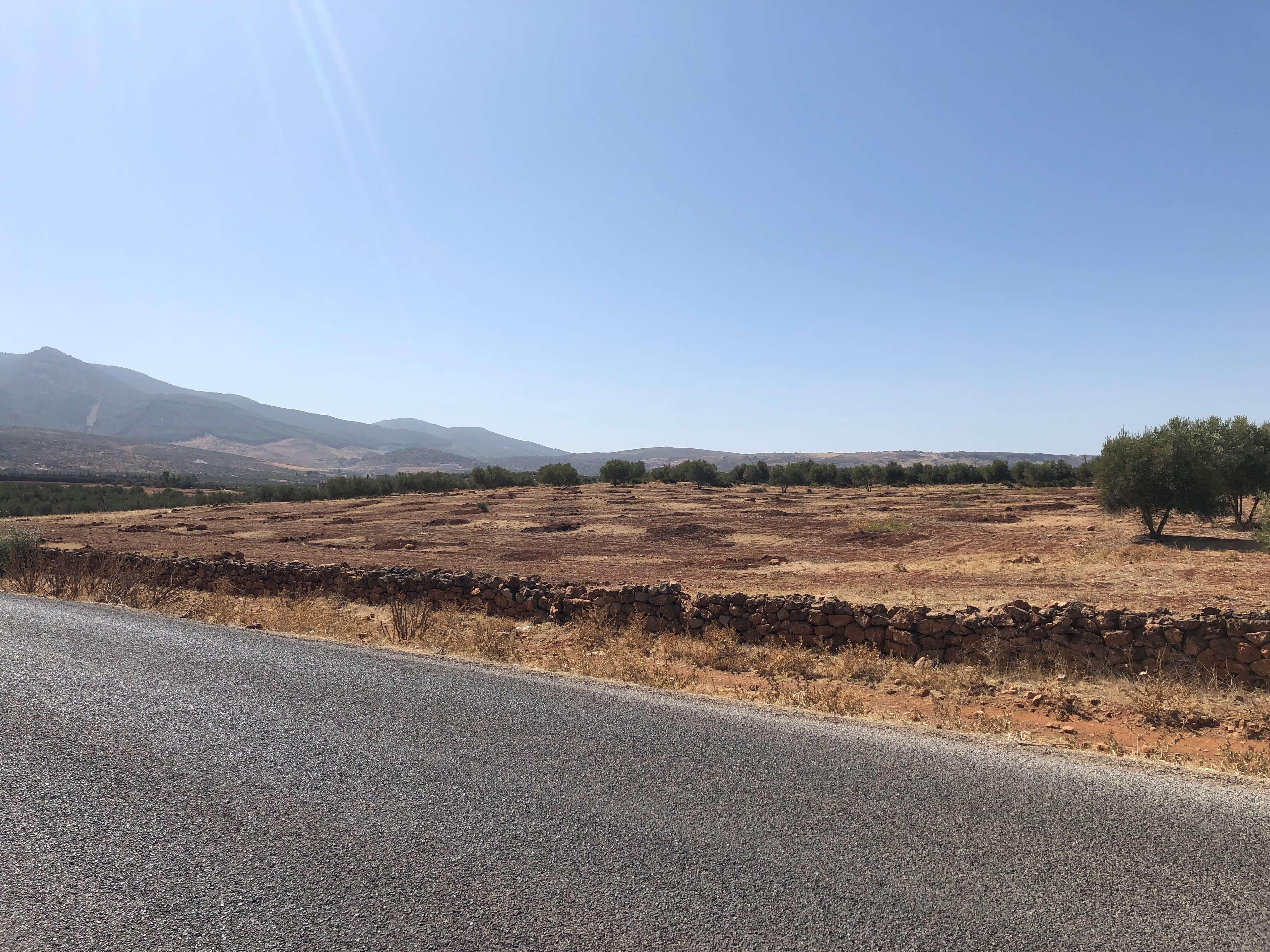 Terrain agricole titré de 1,16ha – Route d'Immouzer