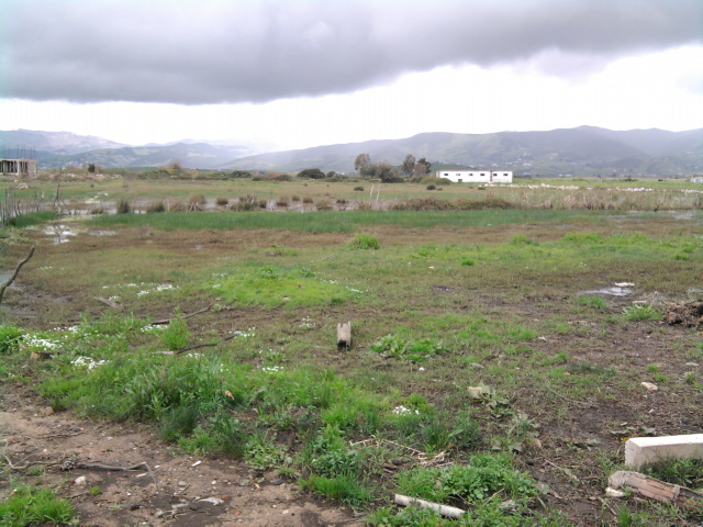Terrain a vendre de 5 hectares a Tétouan (route Tétouan-Ceuta)