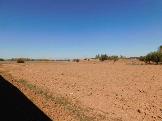 Terrain 1 ha à vendre km 14 route de Fès Marrakech
