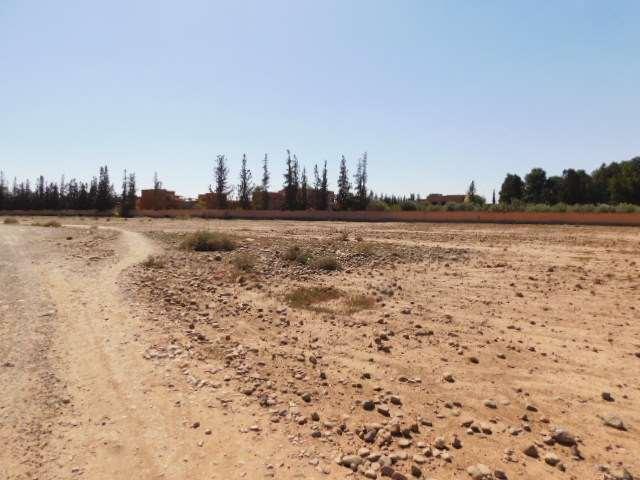 Deux parcelles 1 ha à vendre route de Fes km 13 Marrakech