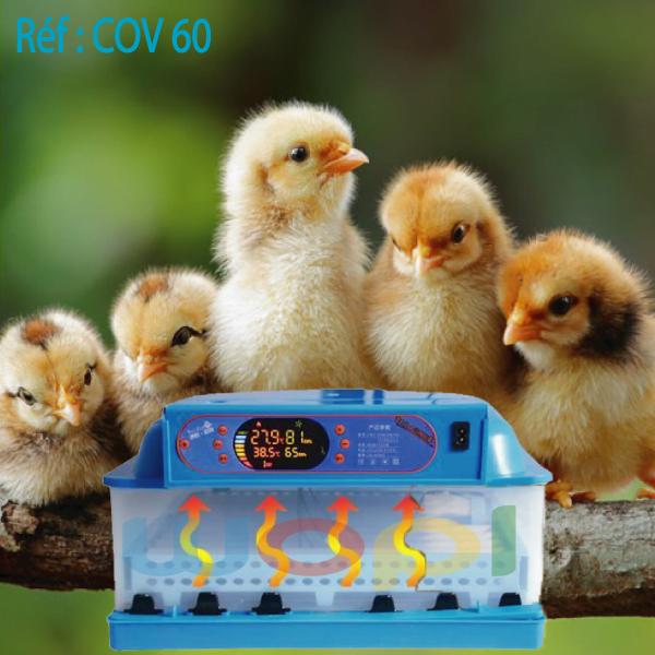 Leader du marché Incubateurs 60 œufs