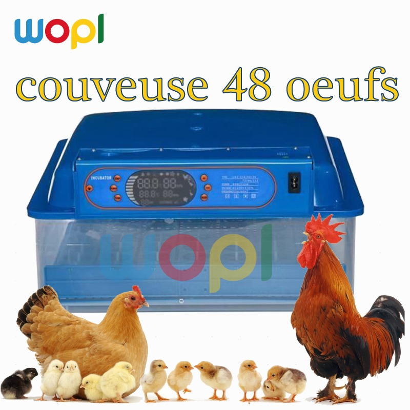Transparent Couveuse Automatique
