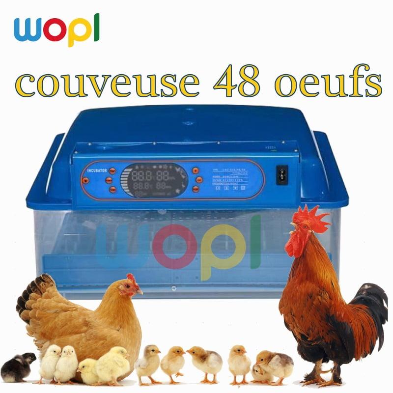 La nouvelle Couveuse 48 œufs