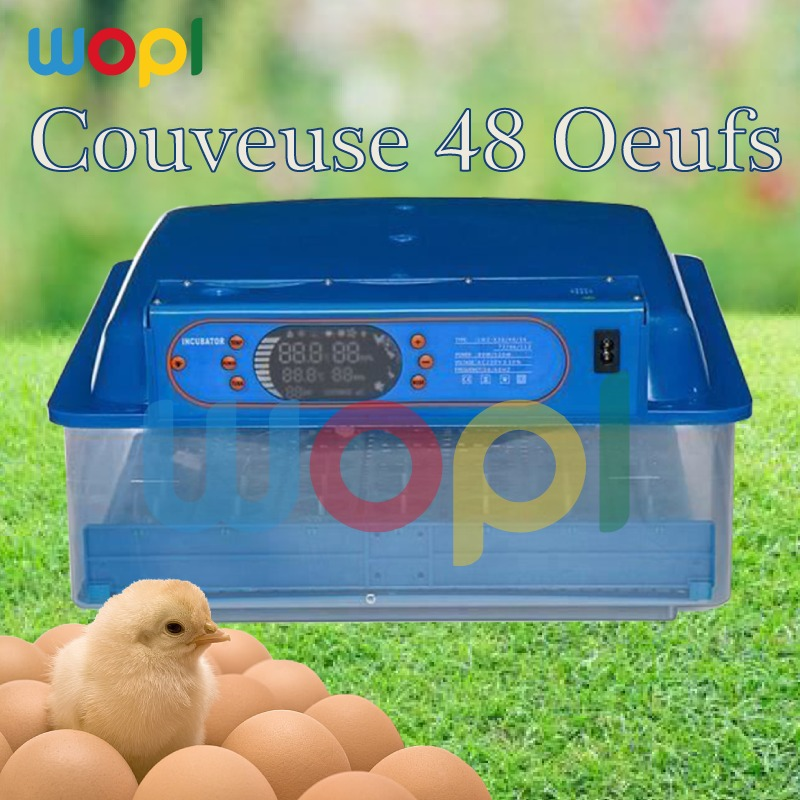 Optimiser le processus d'incubation 48 œuf