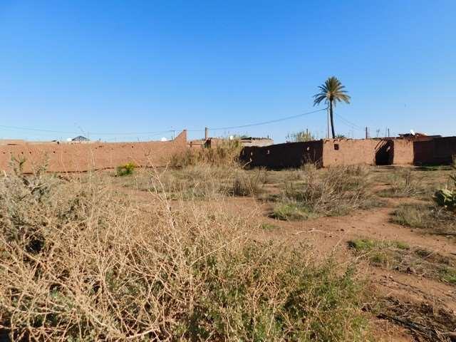 Terrain 9900 m² à vendre km 15 route de Fès Marrakech