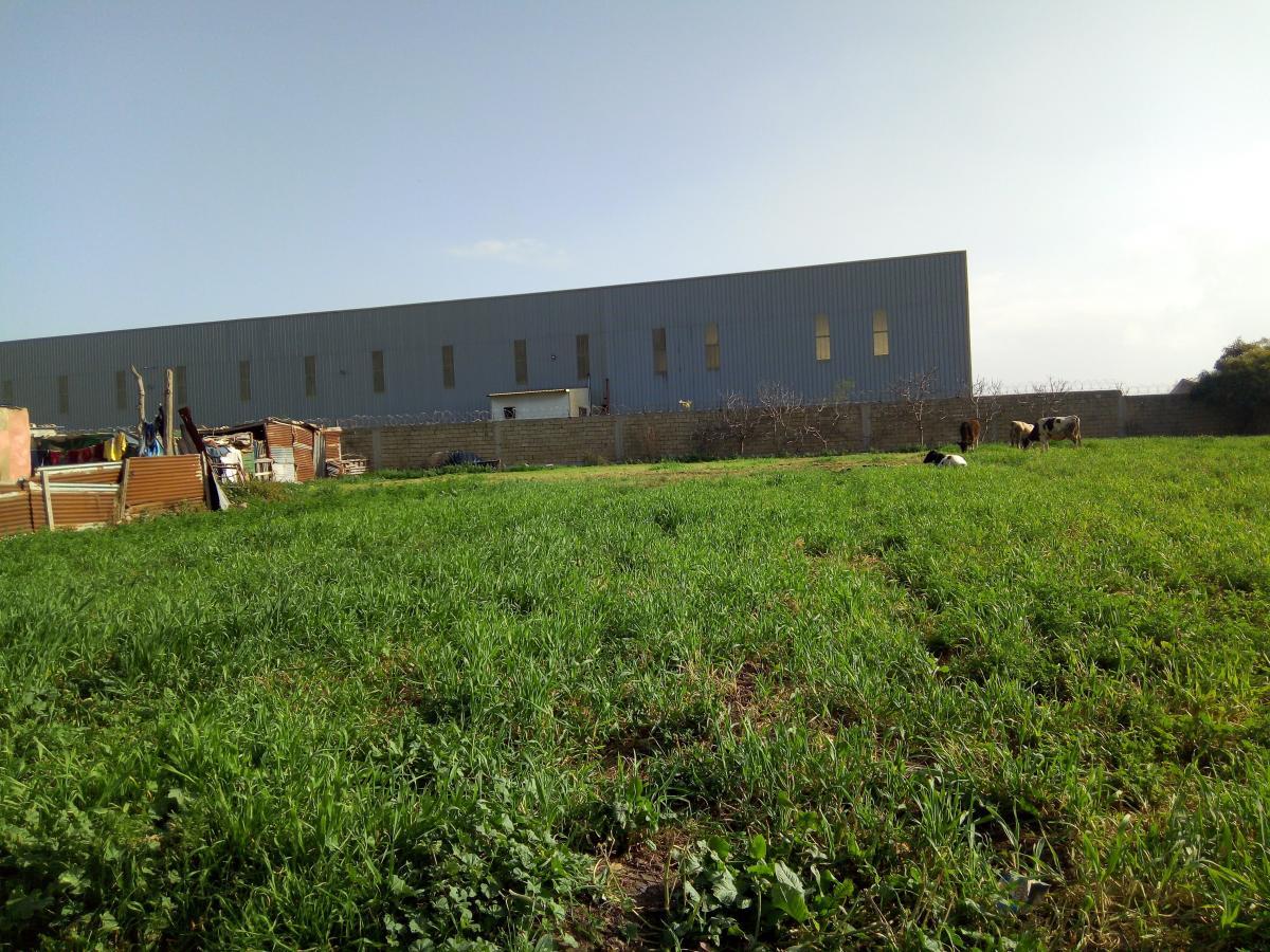 Terrain Industriel 1hectare 6000m² I2 AIN HARROUDA