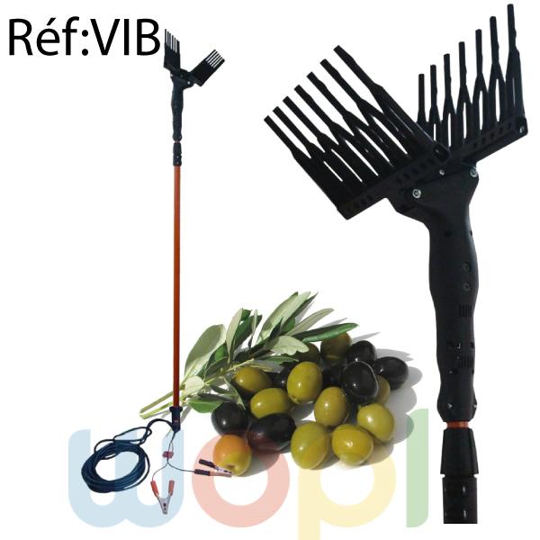 Peigne vibreur Économique pour olive
