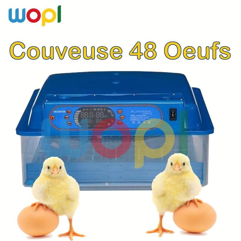 couveuses automatiques pour incuber 48 oeufs