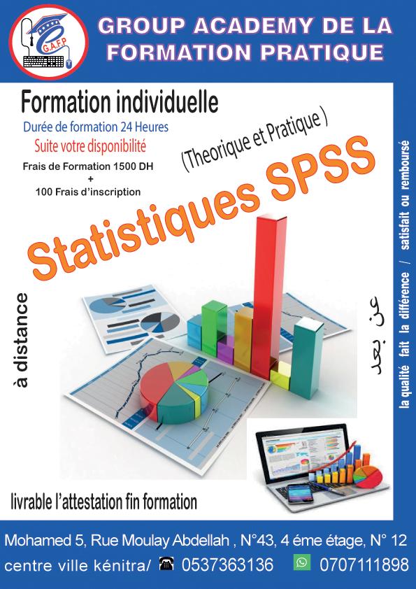Travaux et Formation en SPSS  à distance