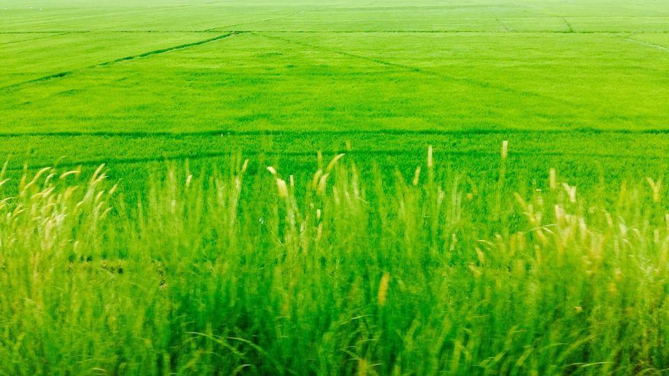 Terrain a vendre 9 hectares pour R+2 à Aïn Taoujdate