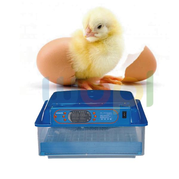 Automatique Couveuse capacité 48 œufs