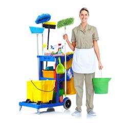 ménagère professionnelle