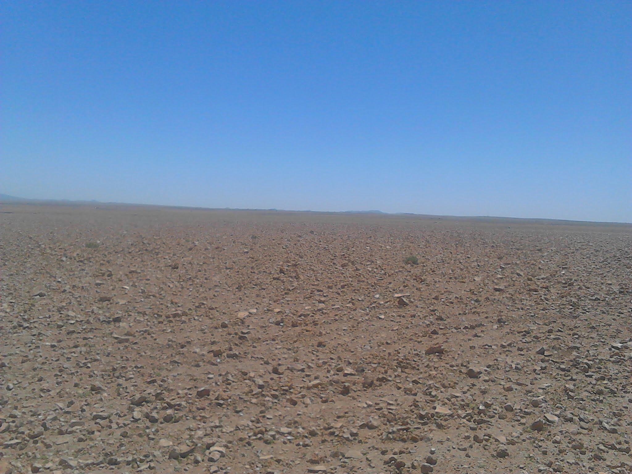Terrain titré 1009 ha à vendre d'urgence à rhamna