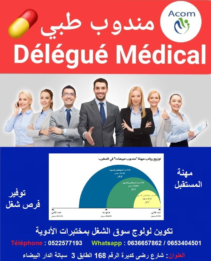 Formation Délégué Médical Stage Emploi